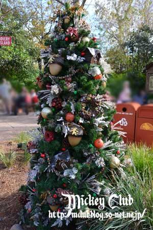 ak_tree10.jpg
